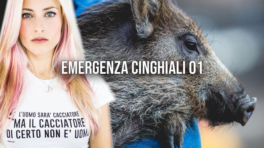 Emergenza Cinghiali
