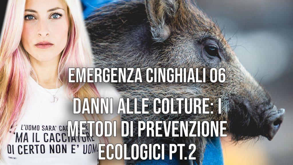 Danni alle colture: i metodi di prevenzione ecologici Pt. 2