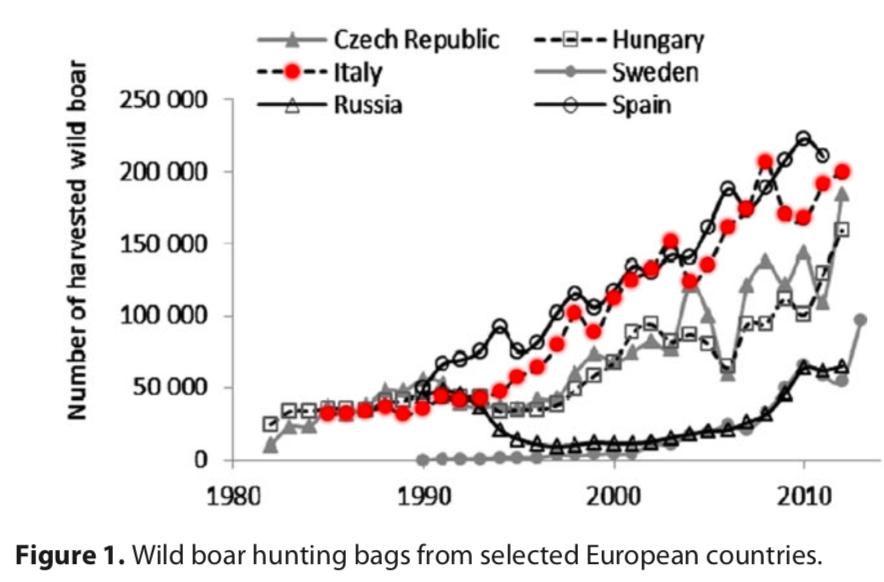 Massei G., J. Kindberg, A. Licoppe, D. Gačić, N. Šprem, J. Kamler, E. Baubet, U. Hohmann, A. Monaco, J. Ozoliņš, S. Cellina, T. Podgórski, C. Fonseca, N. Markov, B. Pokorny, C. Rosell & A. Náhlik 2015. Wild boar populations up, numbers of hunters down? A review of trends and implications for Europe. Pest Management Science 71 (4): 492-500). Nonostante il numero di cinghiali ammazzati cresca di anno in anno, cresce anche la loro popolazione (Grafico 2, Massei Pest Management