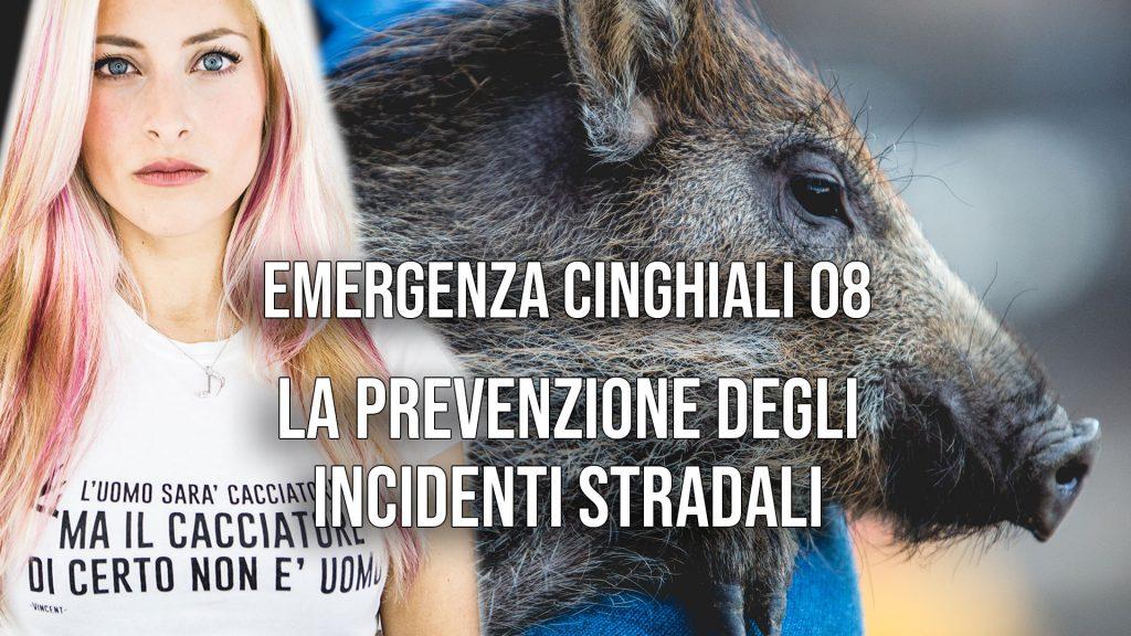 EC08 - La prevenzione degli incidenti stradali