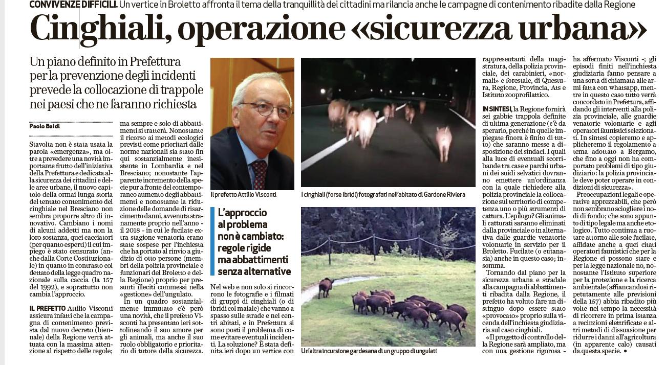 Cinghiali a Brescia, articolo sull'operazione sicurezza stradale